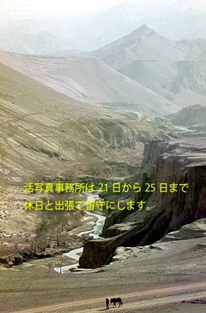 30年前に香港で現像したアグファのフィルムは劣化が激しい。