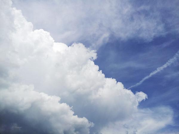 空が高くて夏雲が湧いてます