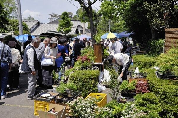 盆栽は人気があるので、人出が多いですね。